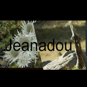 "Jeanadou ""Cheminement"" Album"